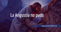 la angustia no pudo palabras de fe engelbert gonzalez id
