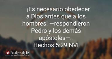 devocional obediencia siglo xxi palabras de fe