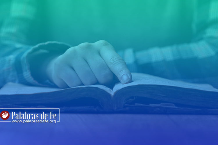 Plan de lectura bíblica para nuevos creyentes palabras de fe