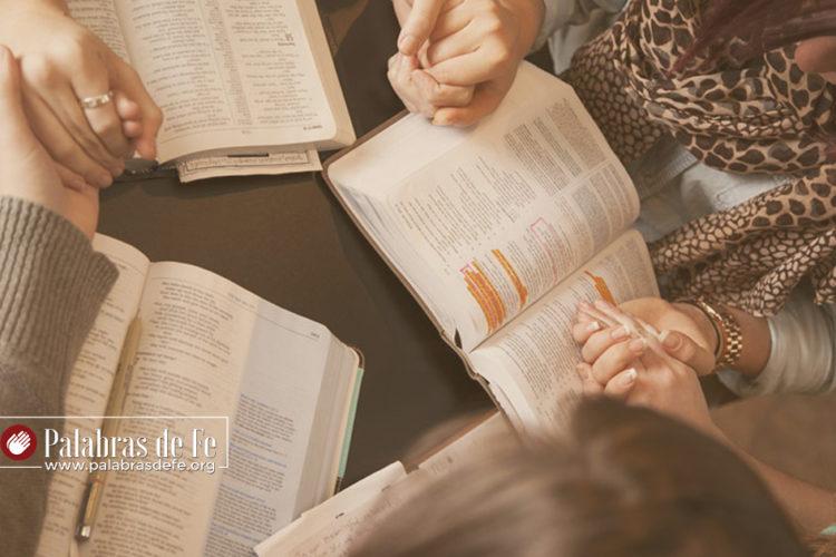 importancia del discipulado bíblico palabras de fe